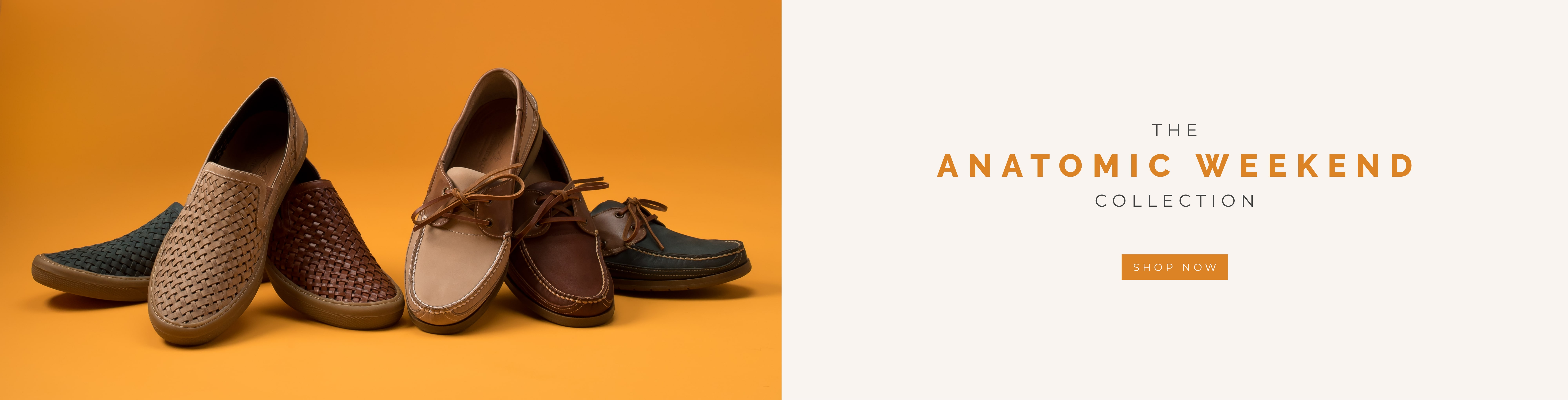 Anatomic Collection 2020